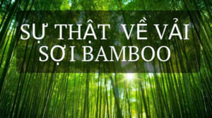 Sự thật về vả bamboo